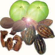 Triphala is the most gentle healthy stool softener